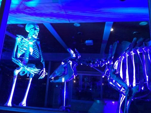 glow eindhoven, light art festival, street art, skeleton, bones