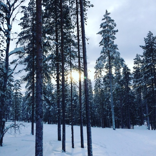 levi, lapland, finland, arctic circle, skiing, winter holiday